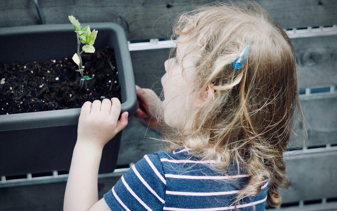 Alimentazione vegana nell'età pediatrica